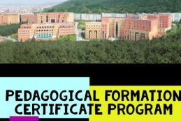 PEDAGOGICAL FORMATION